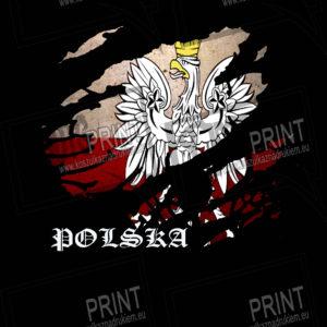 Polski orzeł tło