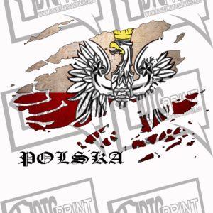 Koszulka patriotyczna. Koszulka męska z nadrukiem orła